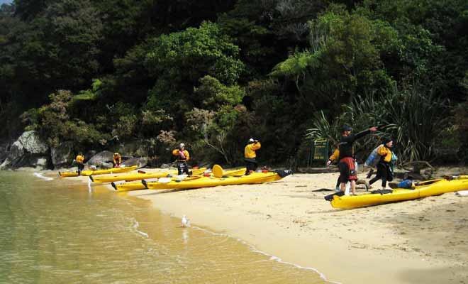 Si vous n'avez jamais expérimenté le kayak, il est recommandé de prendre une leçon ou de s'inscrire à une visite guidée. Ne serait-ce que pour apprendre à tenir correctement sa pagaie ou s'extraire du kayak en cas de problème.