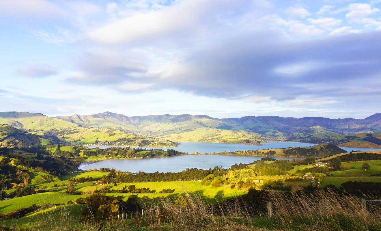 Hilltop offre une vue dégagée sur la péninsule de Banks. On distingue même le village d'Akaroa au loin.