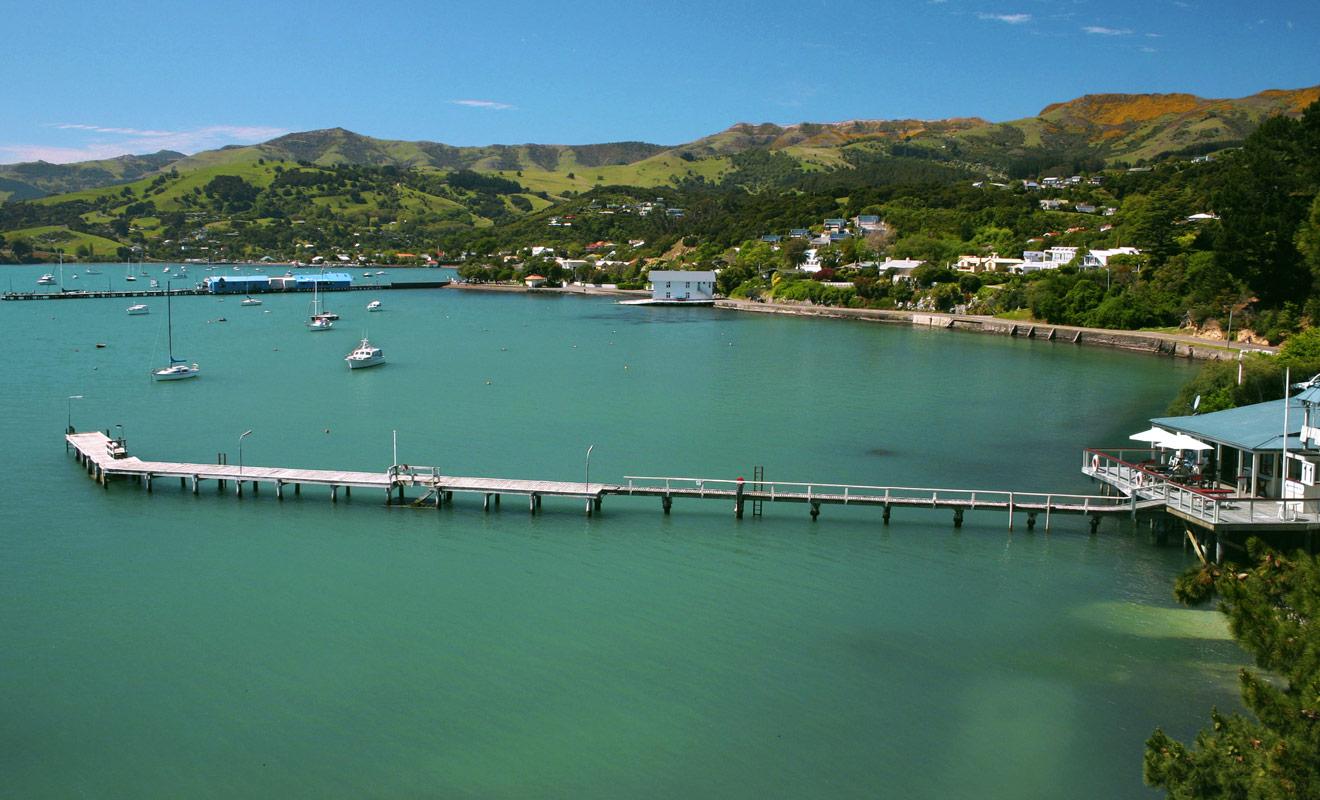 La péninsule de Banks, et le petit village d'Akaroa attirent les vacanciers de Christchurch et les touristes du monde entier qui souhaitent nager avec les dauphins.