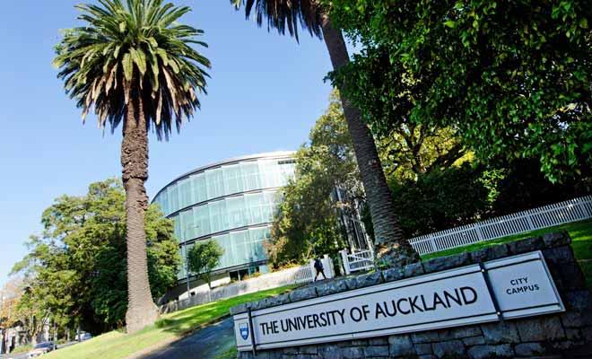Le campus principal d'Auckland est situé à quelques minutes à pied du centre-ville. Il s'agit d'un campus de style anglo-saxon avec de petites maisons dédiées à l'enseignement de telle ou telle spécialité.