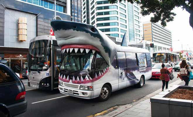 Impossible de manquer le bus qui assure la navette avec l'aquarium du Kelly Tarlton's. Vous l'aurez deviné, on peut y observer des requins, mais aussi nager avec eux !