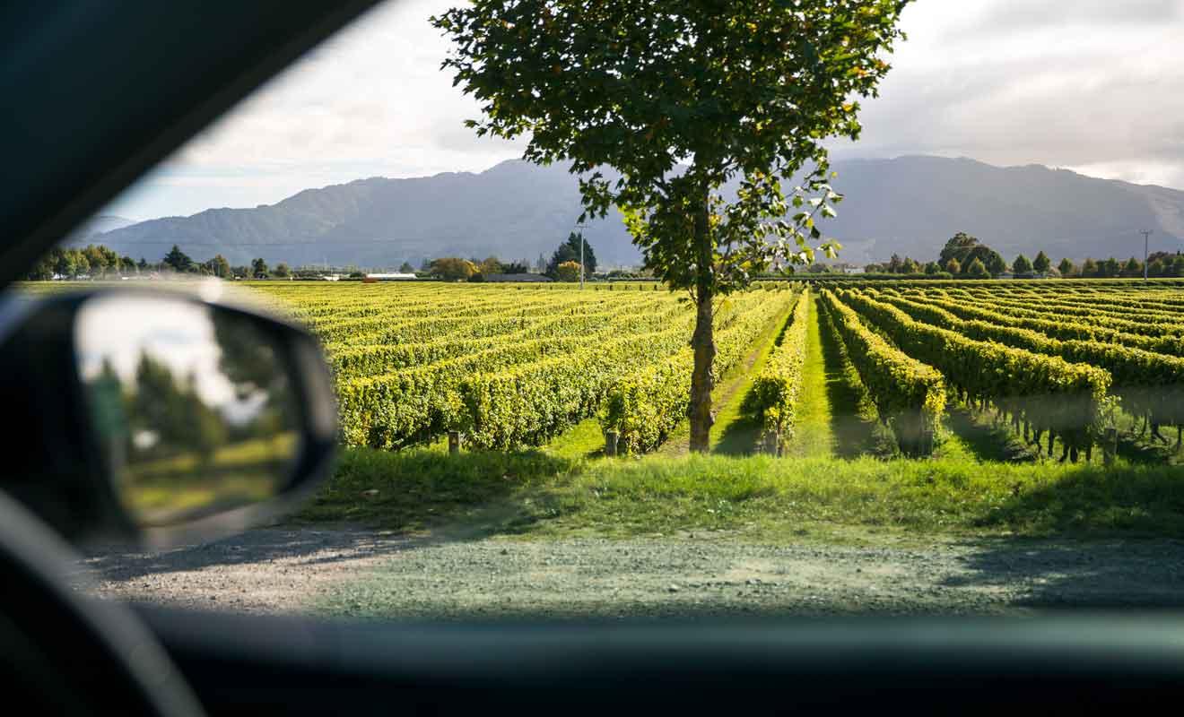 Toutes les exploitations viticoles du Marlborough proposent des parkings gratuits.