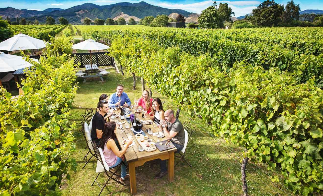 Saint Clair Vineyard Kitchen vous permet de déjeuner à deux pas des ceps de vigne.