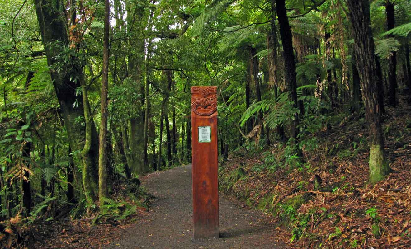 Il suffit d'une vingtaine de minutes pour rejoindre la chute en suivant le sentier en forêt.