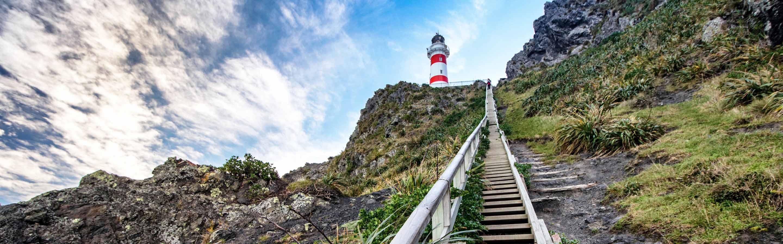 Randonnée pour rejoindre le sommer du phare emblématique de Cap Palliser.