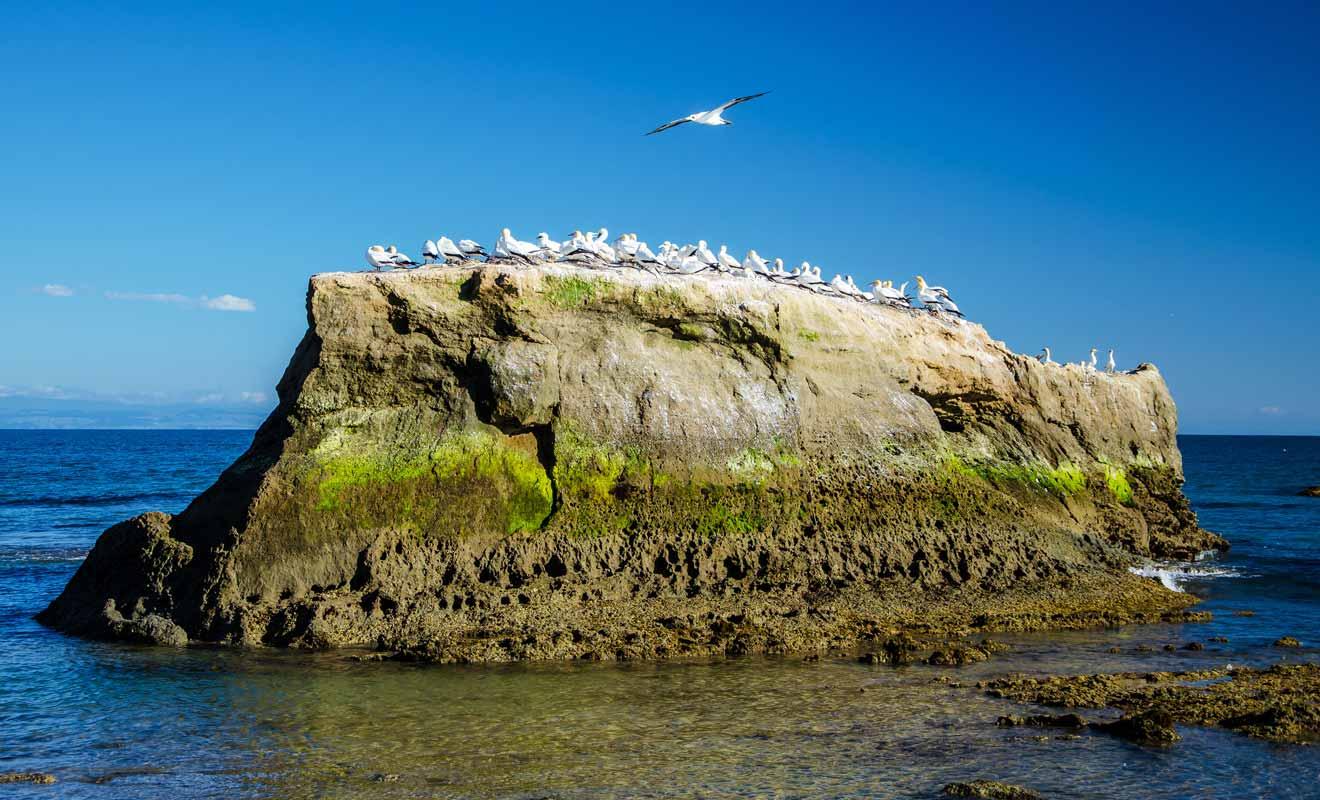 À partir de ce point, il faudra suivre le sentier qui permet de rejoindre le sommet de la falaise.
