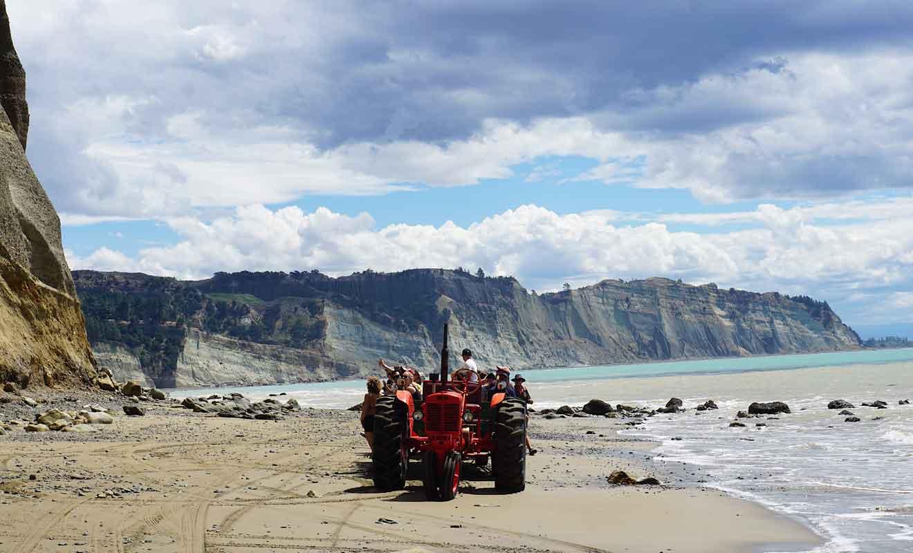 Deux tours opérateurs se partagent les sorties à Cape Kidnappers, par les falaises ou par la plage.