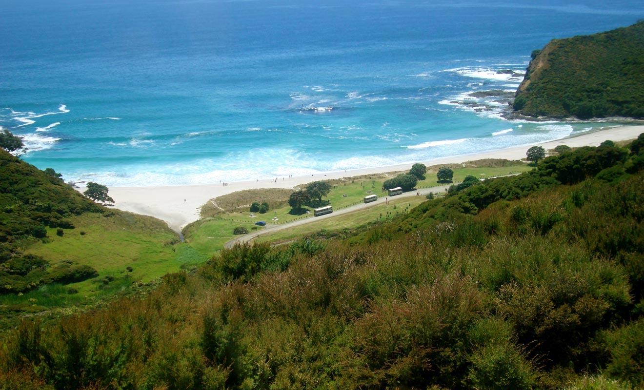 « Te Arararoa » est la plus grande randonnée de Nouvelle-Zélande. Elle traverse l'intégralité du pays en partant du Cape Reinga.