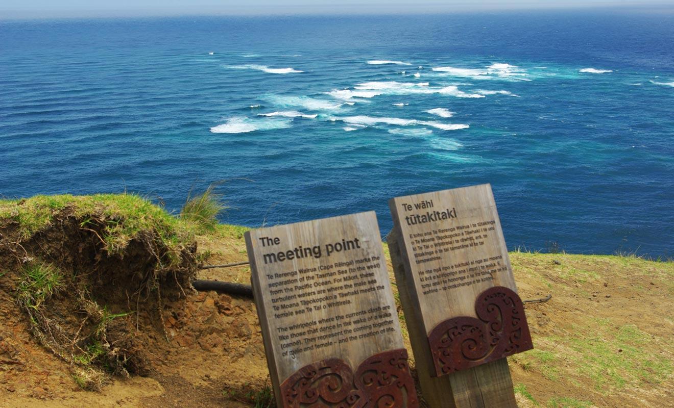 L'océan Pacifique rencontre la mer de Tasman et les courants contraires forment des vagues au large. La mer de Tasman est colorée bleu/vert, tandis que l'océan Pacifique est teinté bleu/gris.