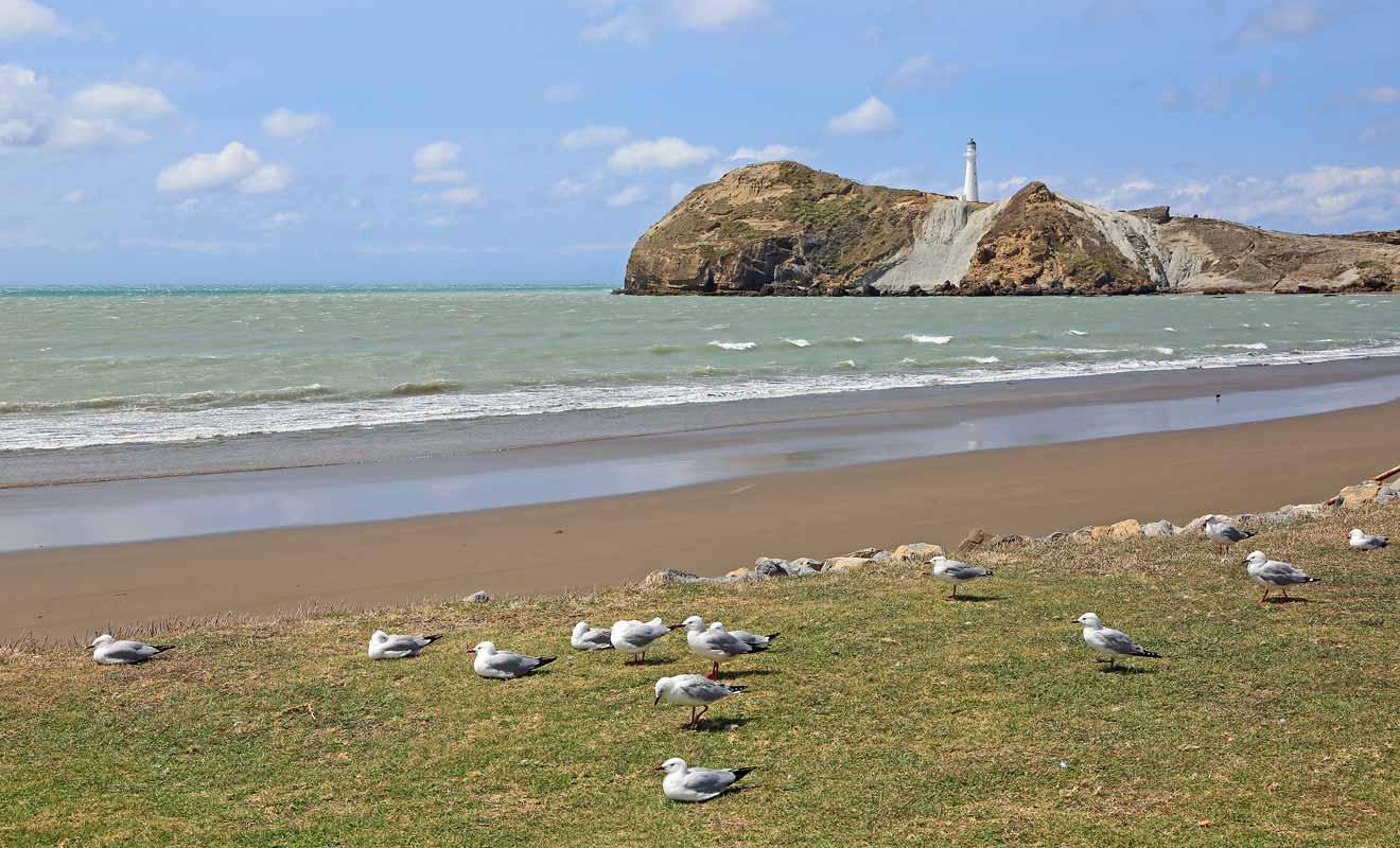 Castlepoint attire les vacanciers en provenance de Wellington, mais très peu de visiteurs étrangers se donnent la peine de venir admirer la plage et son phare.