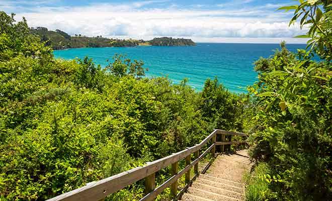 Avant de gagner la plage, il reste à descendre un escalier en bois. L'inconvénient, c'est qu'il faudra le gravir au retour...