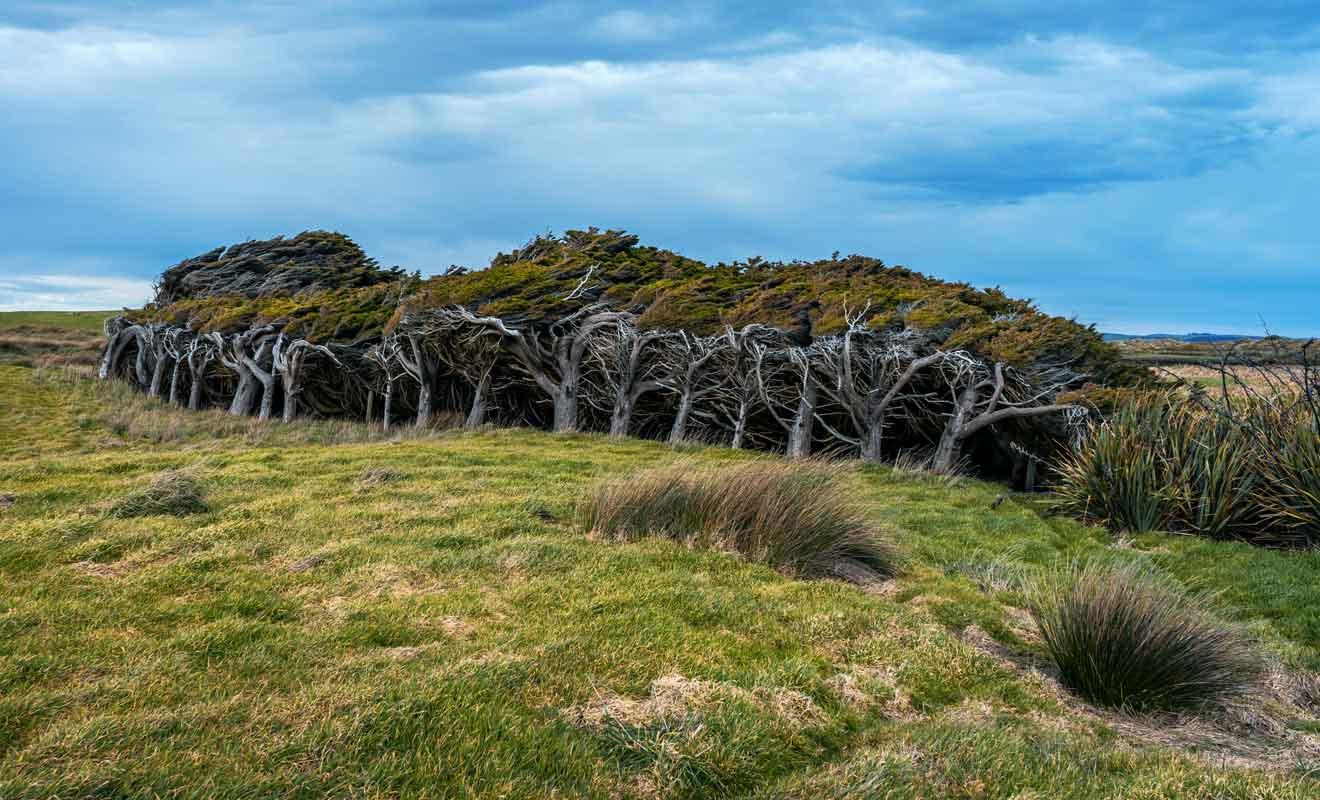 La pluie et le vent donnent du caractère à cette région qui s'adresse à des voyageurs qui aiment la nature à l'état brute.