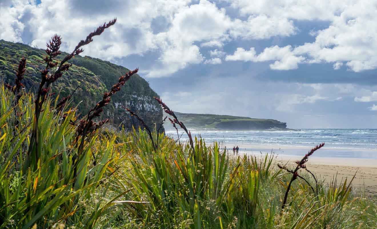 Avec ses paysages sauvages et sa nature préservée, les Catlins sont un joyau de l'île du Sud.