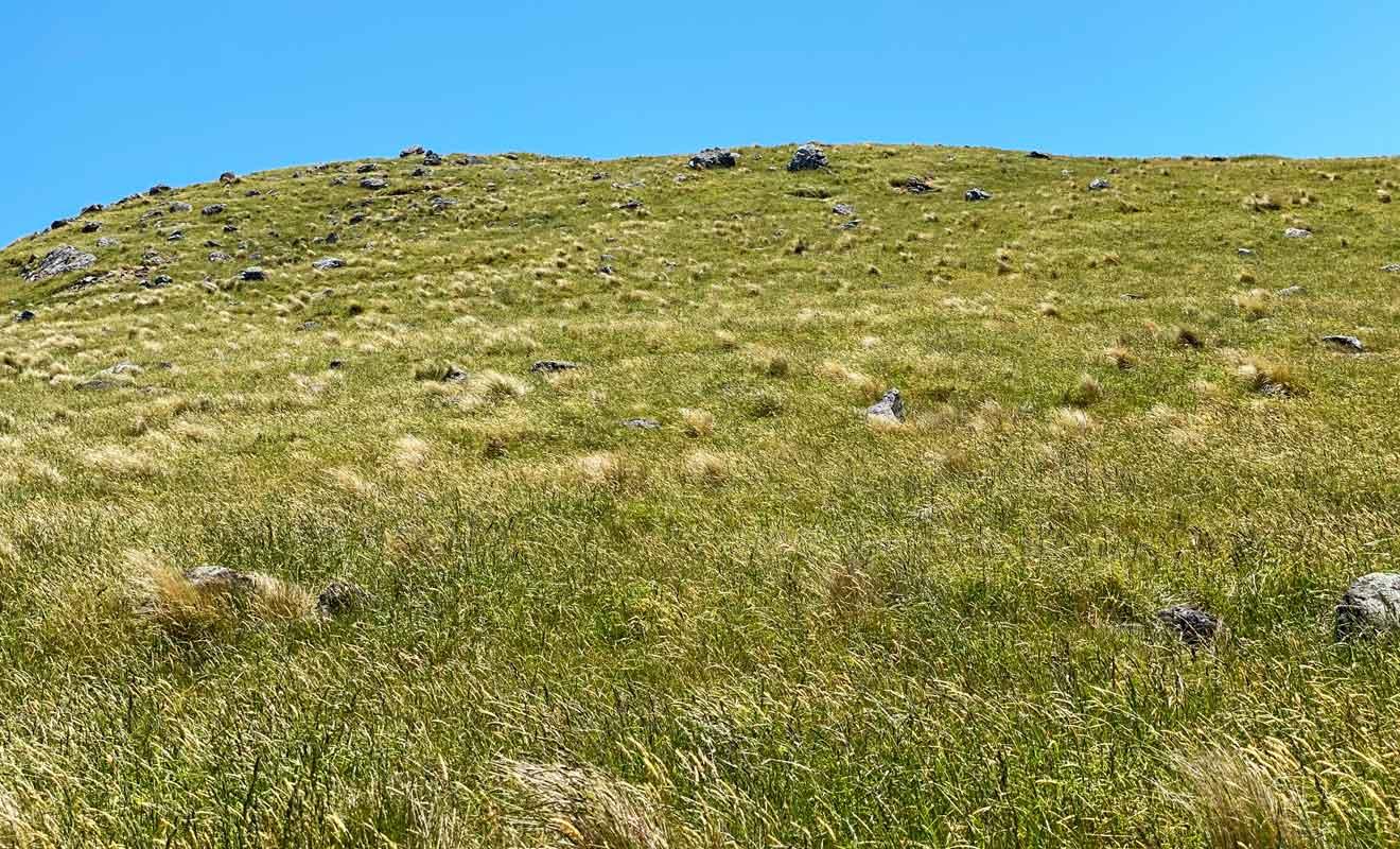 Le sentier est plus aisé à monter qu'à descendre et peut donner le vertige par endroit. Heureusement, la pente de la colline est praticable à condition que l'herbe soit sèche pour ne pas glisser.