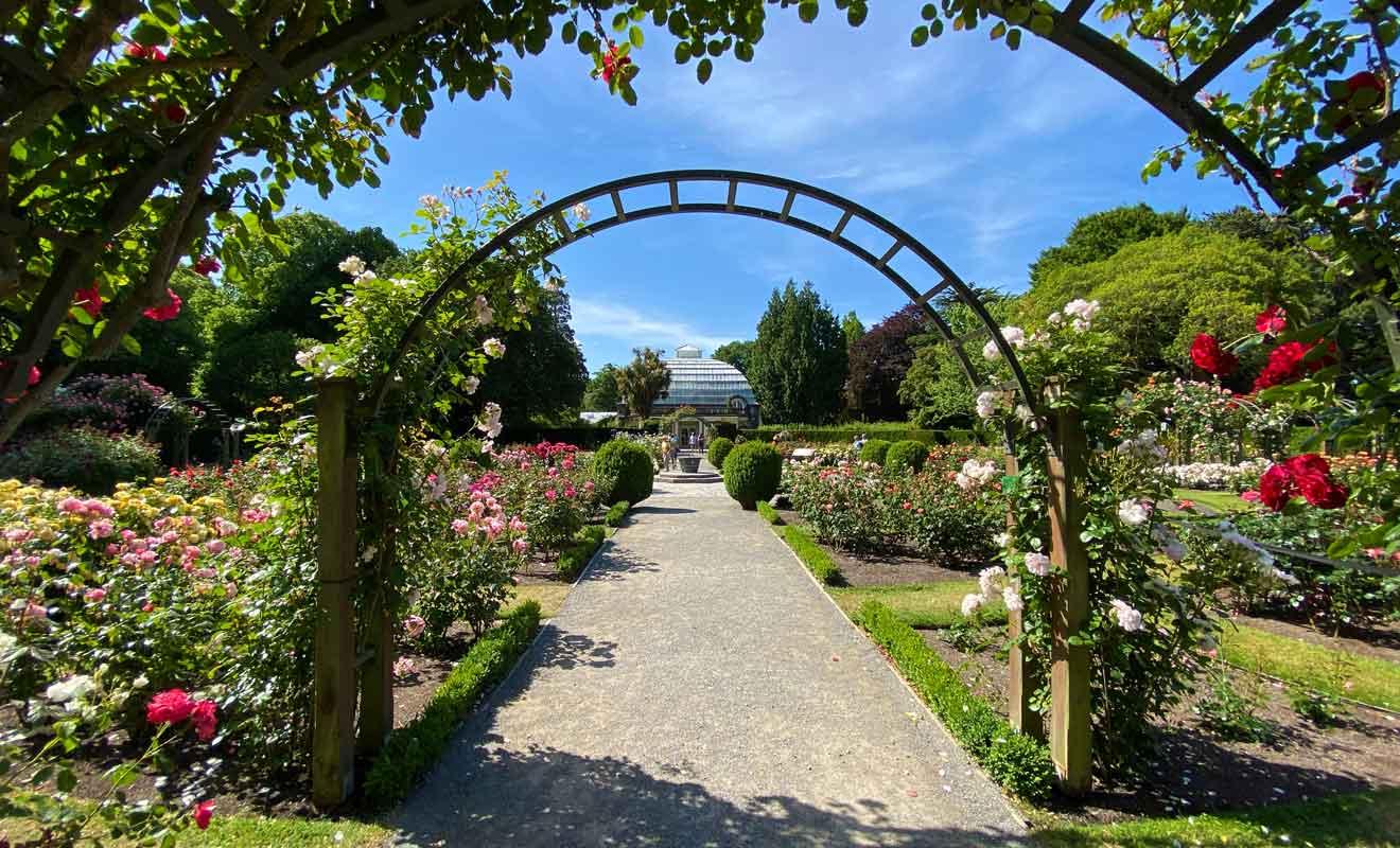 Très romantique, Central Rose Garden est souvent utilisée pour les photos de mariage.