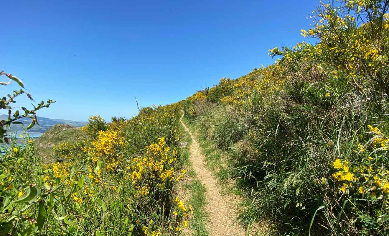 Le chemin longe le cratère à bonne distance sans donner le vertige.