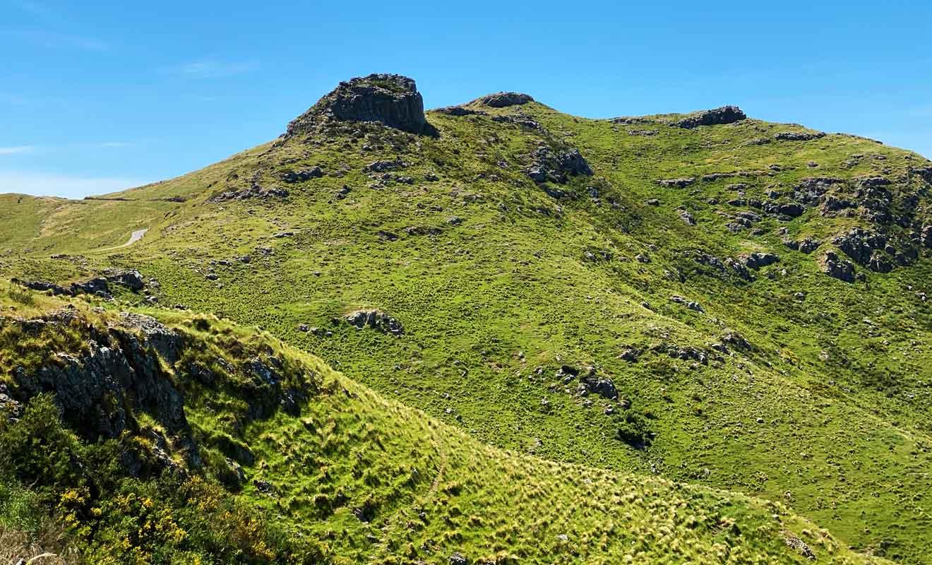 Les tribus maories se faisaient la guerre pour gagner des territoires de chasse ou de pêche.
