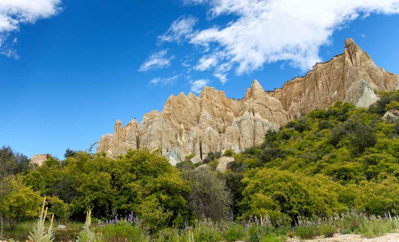 Il faudra réaliser un détour pour contourner la rivière Ahuriri et et rejoindre les falaises.