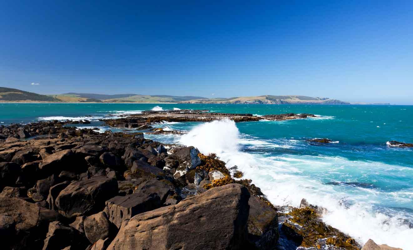 Les rochers sont remontés à la surface après des millions d'années passées sous l'océan.