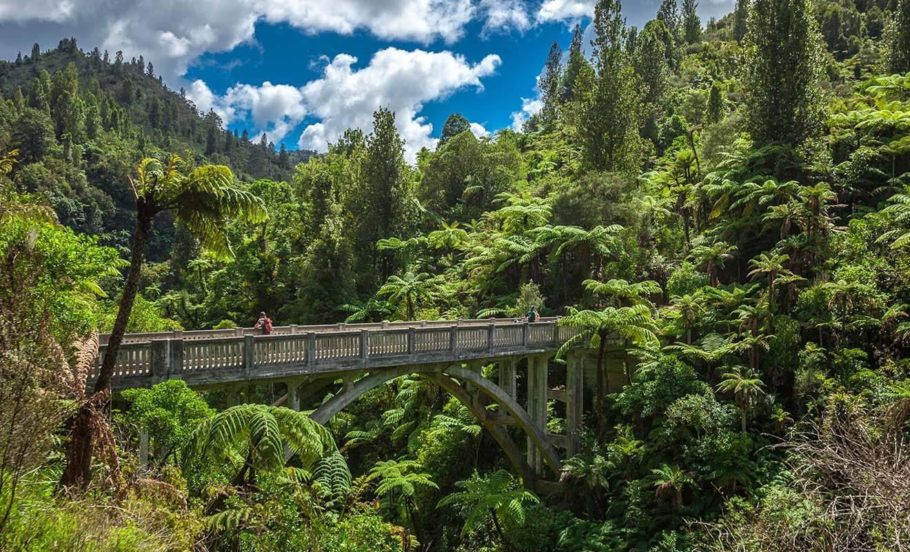 Ce pont devait autrefois relier deux routes entre elles, mais le projet fut abandonné et seul le pont a subsisté, perdu en pleine forêt au milieu de nulle part. Il faut aujourd'hui le bonheur des randonneurs.