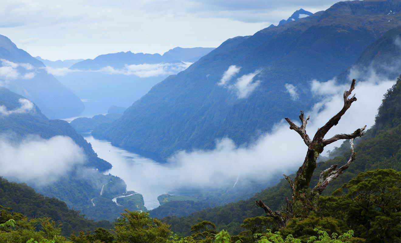Les montagnes se reflètent sur les eaux calmes du Doubtful Sound.