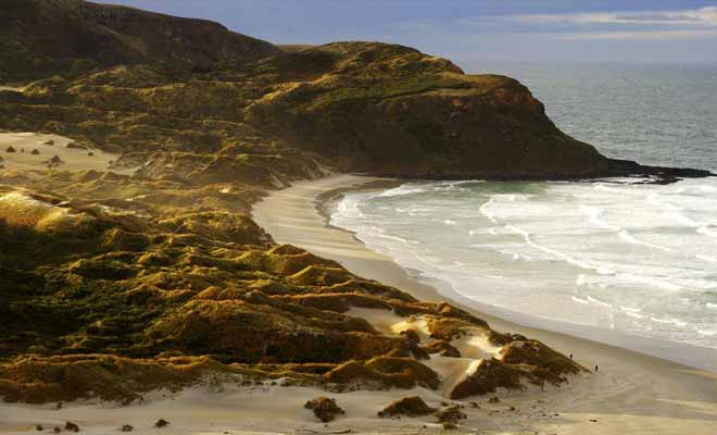 La plage de St Clair est la plus fréquentée par les surfeurs. Mais on trouve de nombreuses plages dans les environs sans forcément s'éloigner beaucoup du centre.