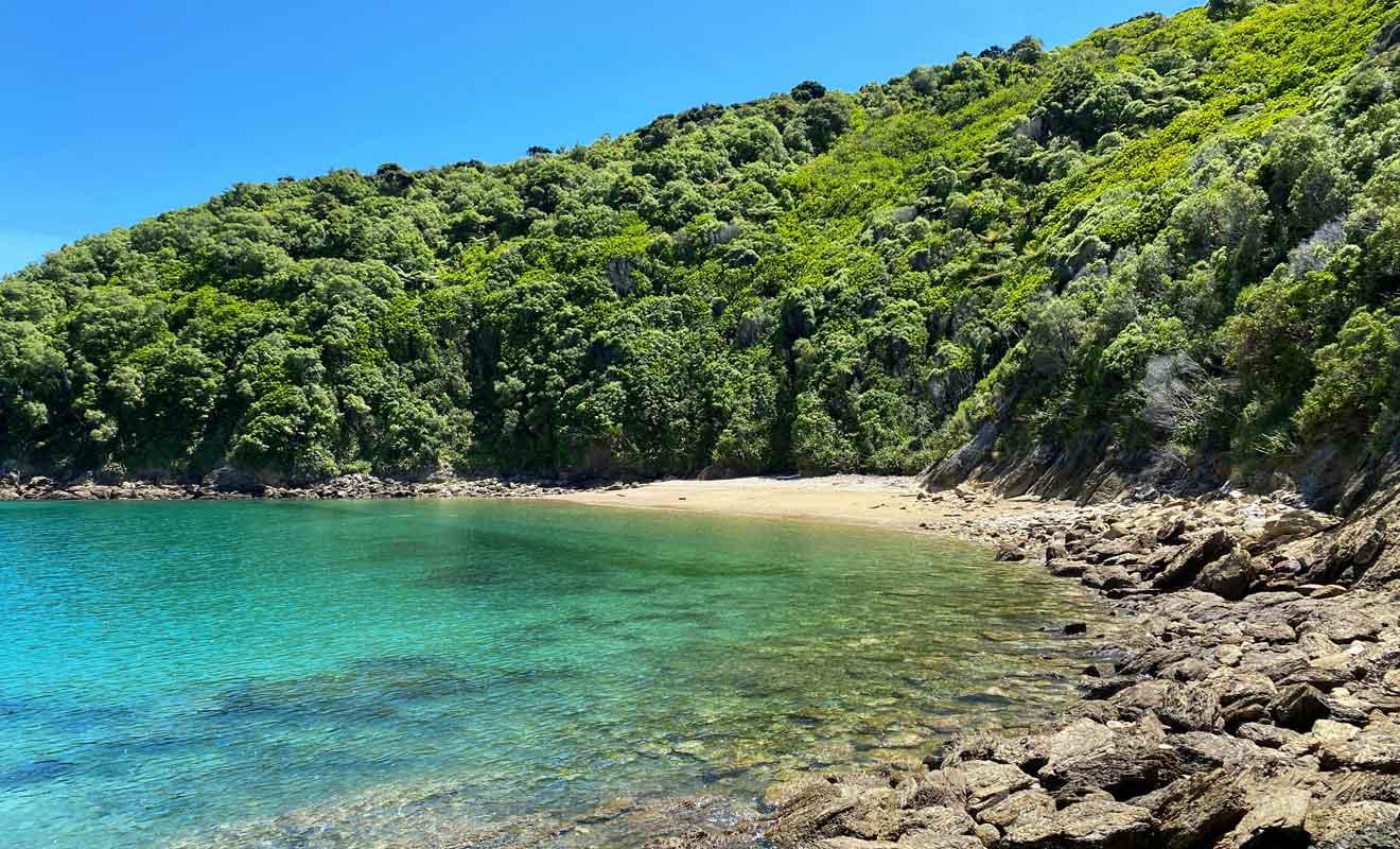 La plage de Man-o-War porte mal son nom, car elle paisible et à l'abri des courants.