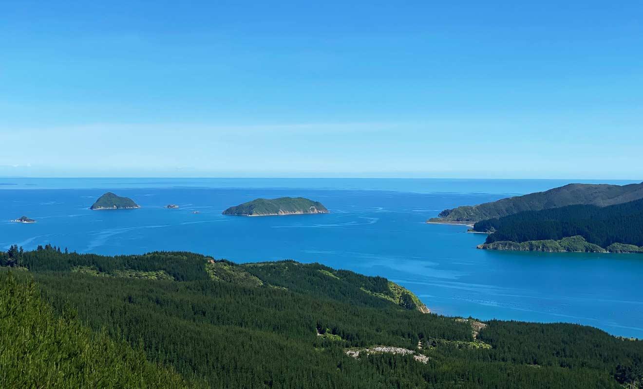 À partir de Squally Cove, le paysage sera une suite ininterrompue de paysages magnifiques.
