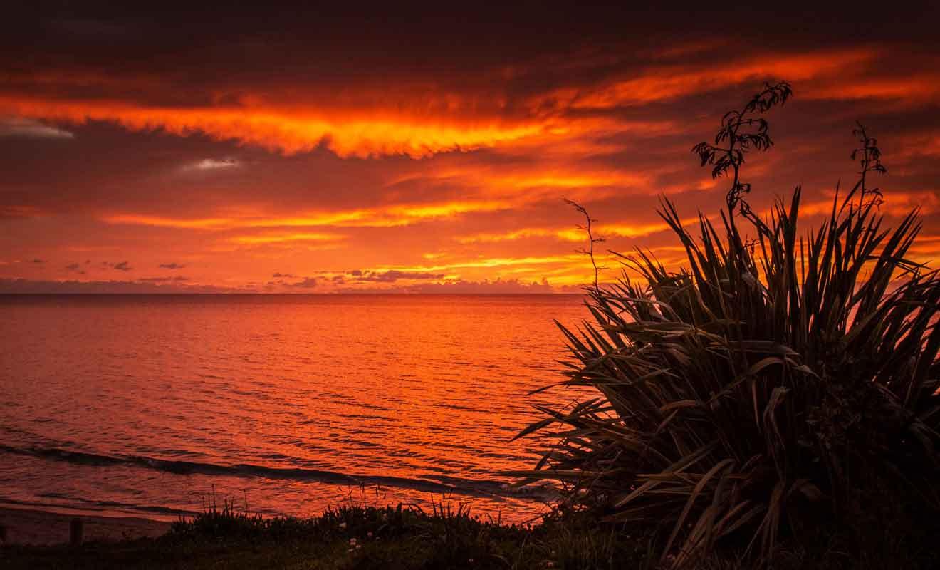 Golden Bay est un refuge paisible pour les voyageurs venu se ressourcer en Nouvelle-Zélande.