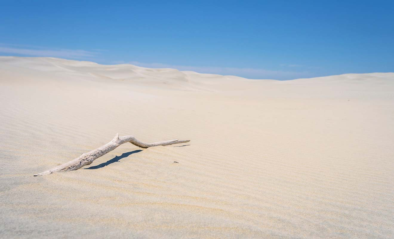 Farewell Spit ressemble à un désert à la pointe de l'île du Sud.