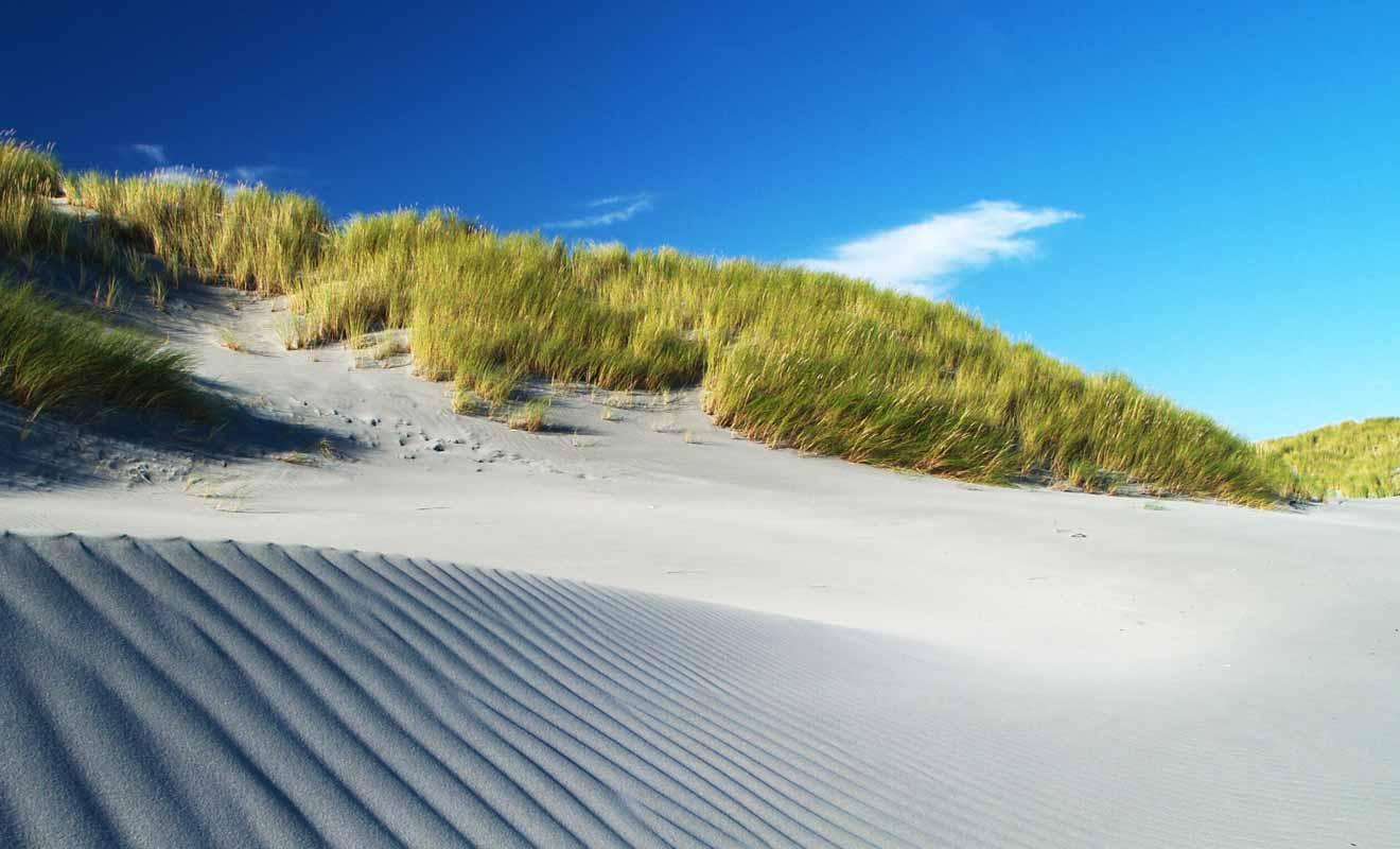 Certaines dunes se déplacent de vingt mètres et un navire échoué est visible ou masqué au gré des saisons.