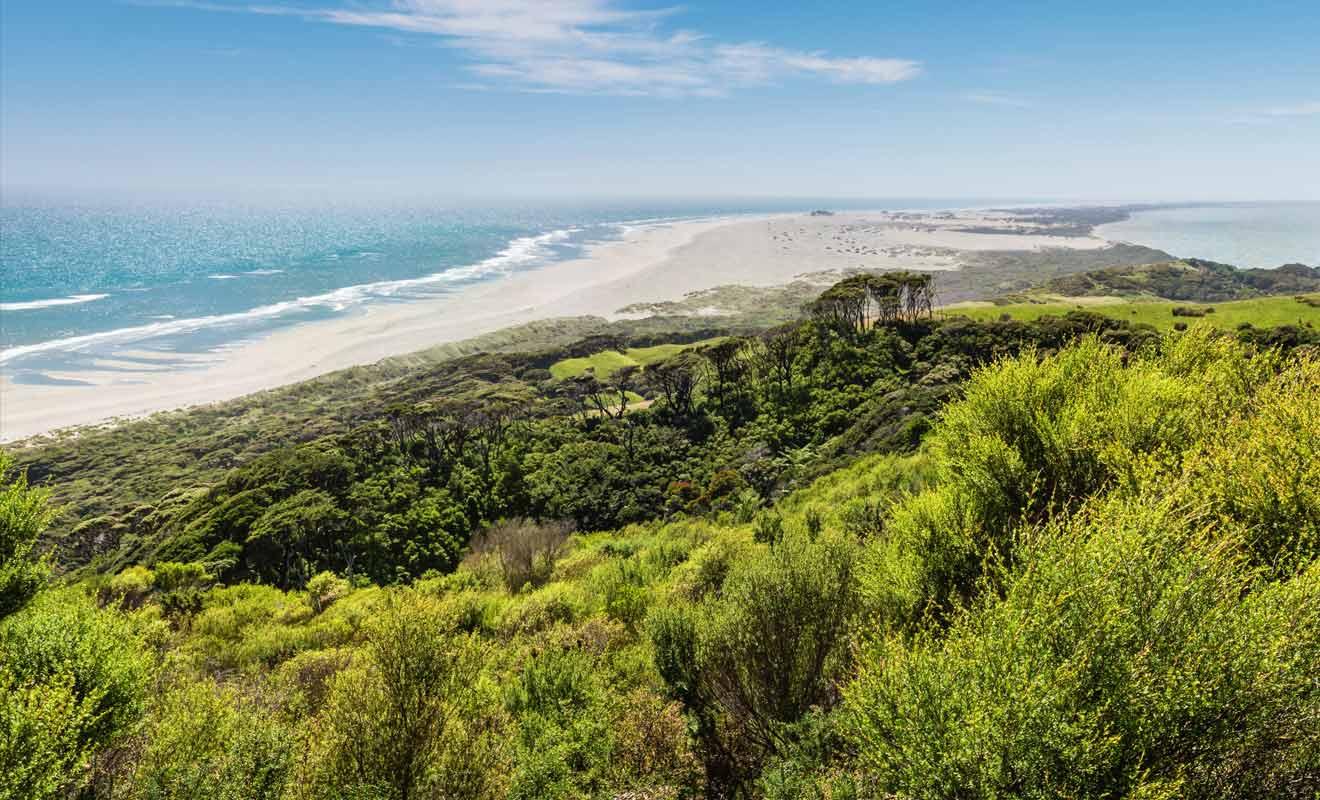 Farewell Spit ressemble à un désert de sable à la pointe Nord de l'île du Sud de la Nouvelle-Zélande.