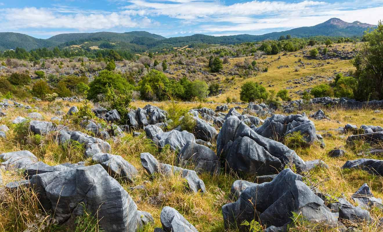 De nombreuses cavités et grottes peuvent être visitées dans les Takaka Hills.