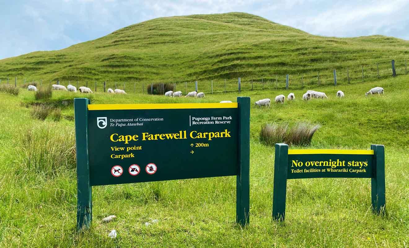 Il suffit de quelques minutes pour gravir la colline qui mène aux falaises.