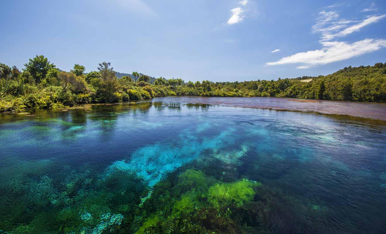 La pureté de l'eau est telle que l'on peut voir à 63 m sous la surface.