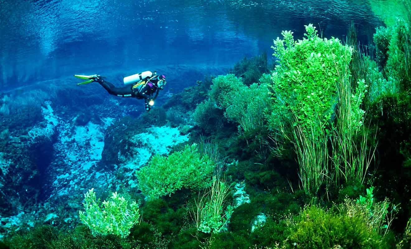 L'eau est d'une pureté quasi parfaite, et le paysage aquatique est splendide.