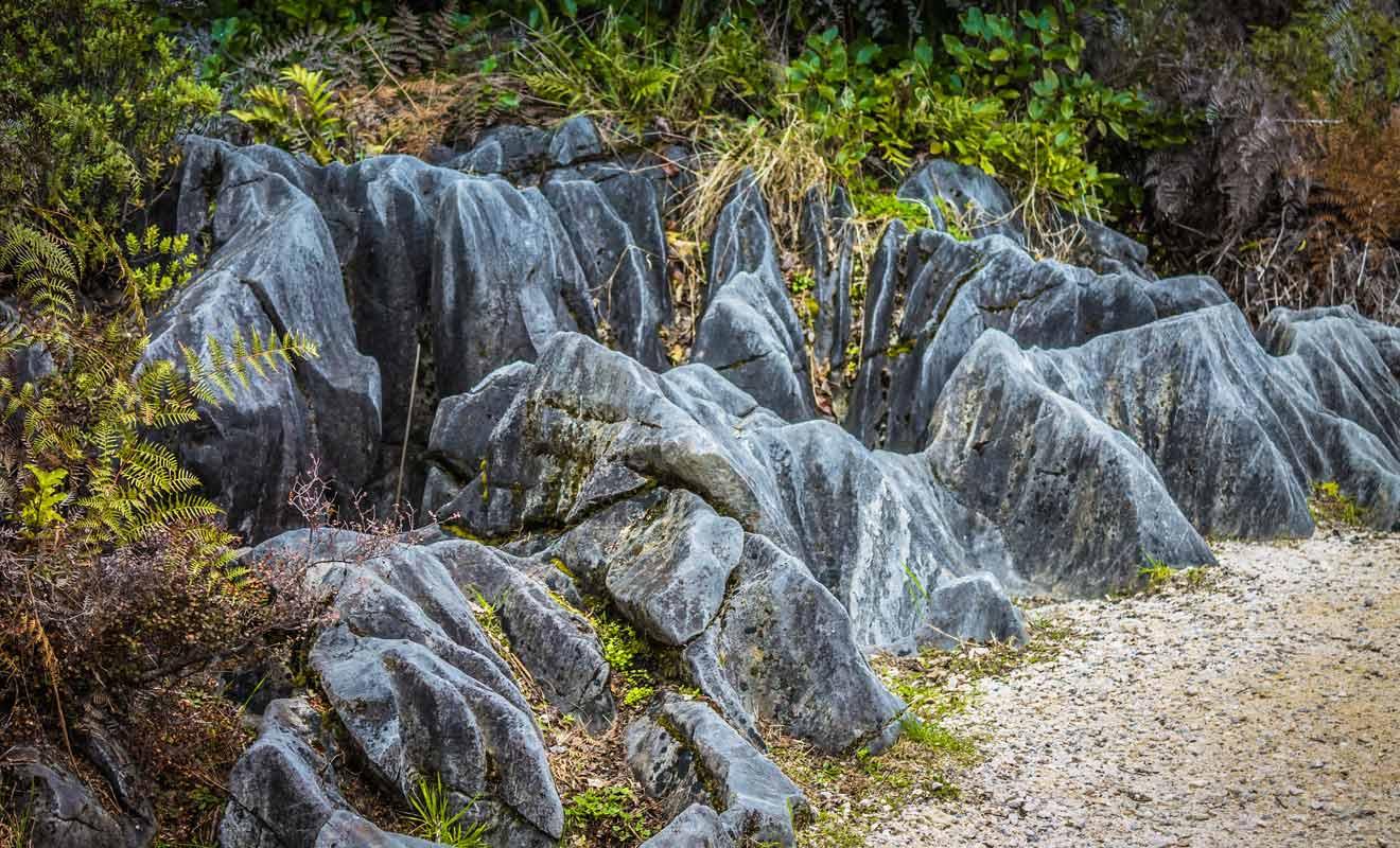 De telles formations rocheuses sont présentes un peu partout dans les collines de Takaka.