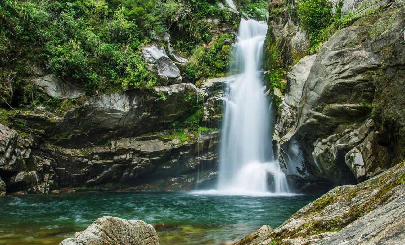 Suivez une courte randonnée d'une heure pour rejoindre les Wainui Falls.