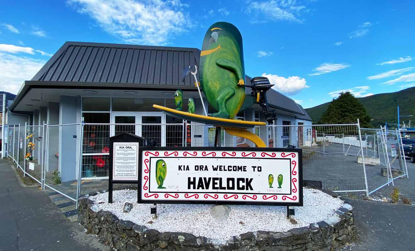 Vous pourrez déguster les meilleures Green mussels de Nouvelle-Zélande au restaurant Mussel Pot.
