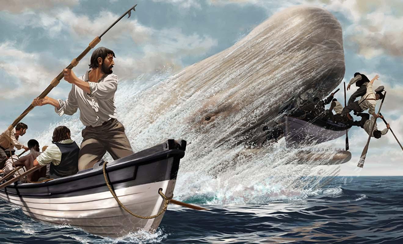 Activité dangereuse, mais très lucrative, la pêche à la baleine attire les Occidentaux qui ont besoin de ports d'attache.