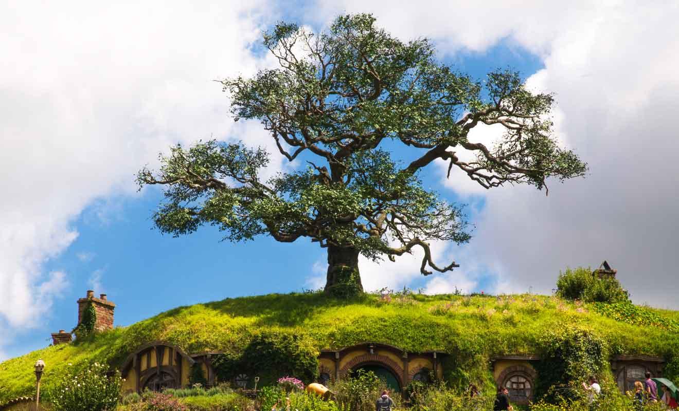 Dans l'oeuvre de Tolkien, la maison de Bilbo se trouve sous un chêne et il a fallu déraciner un arbre pour le replanter au bon endroit.