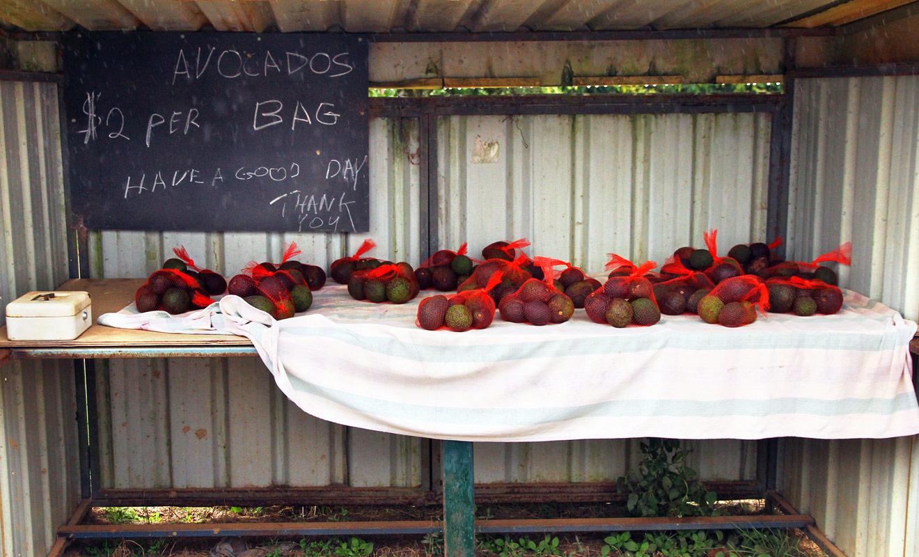 On trouve des Honesty boxes dans tout le pays, mais surtout dans les régions ou l'on produit des fruits et légumes. Ce sont en général des produits de petits producteurs et les tarifs sont très raisonnables.