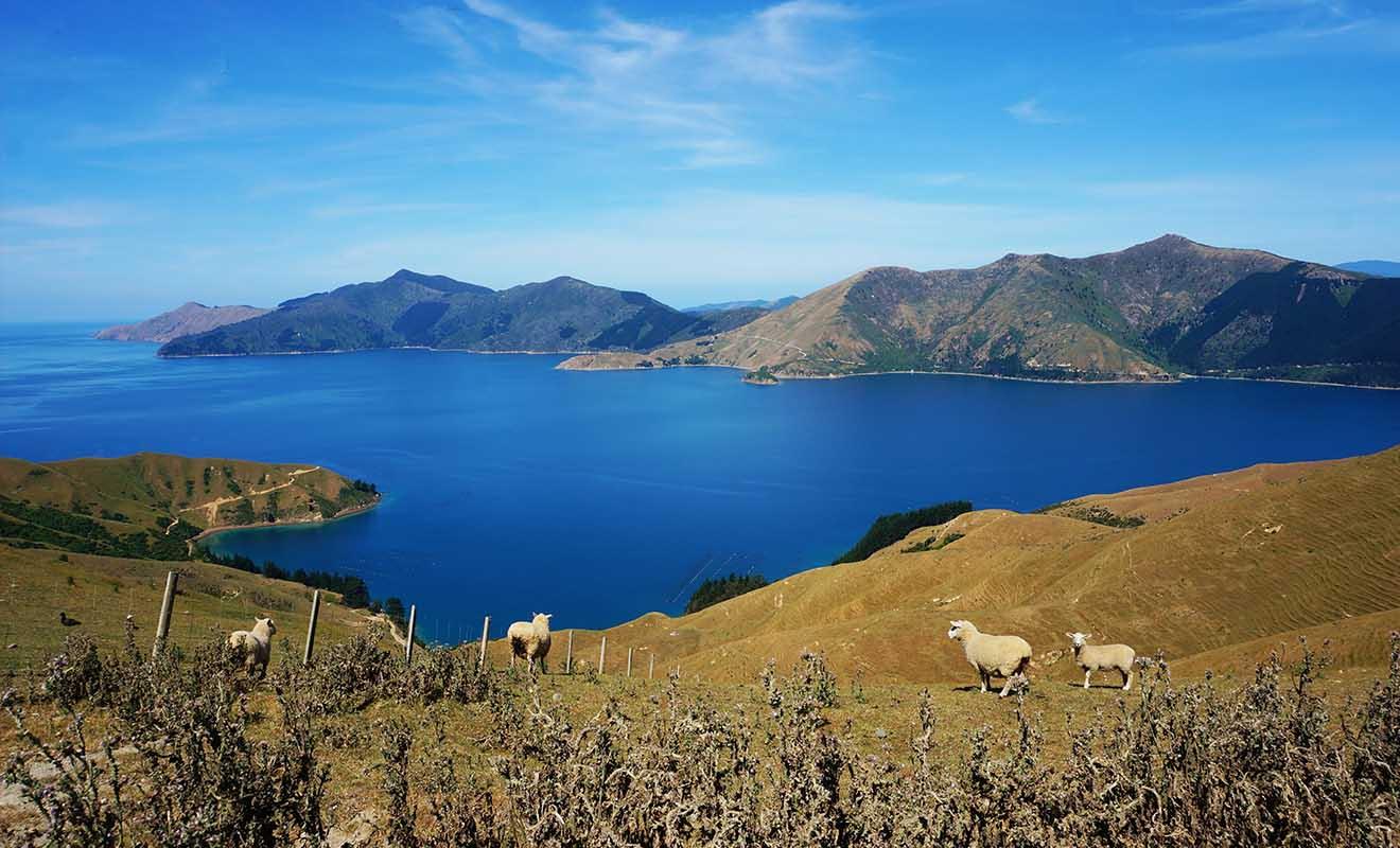 La Nouvelle-Zélande offre des paysages extraordinaires, et une sécurité appréciable quand on voyage seul.