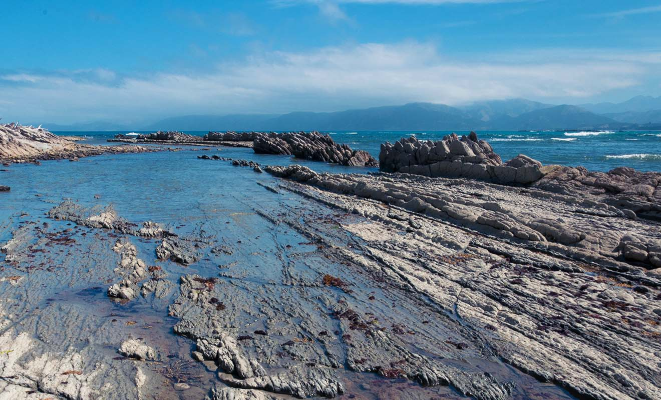 Le tremblement de terre a fait surgir des terres de l'océan, mettant à jour des fonds marins.