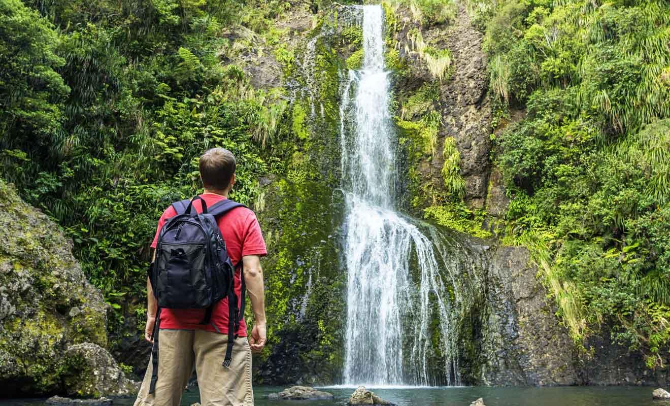 Une heure de marche suffit pour admirer une superbe cascade dans les Waitakere Ranges.