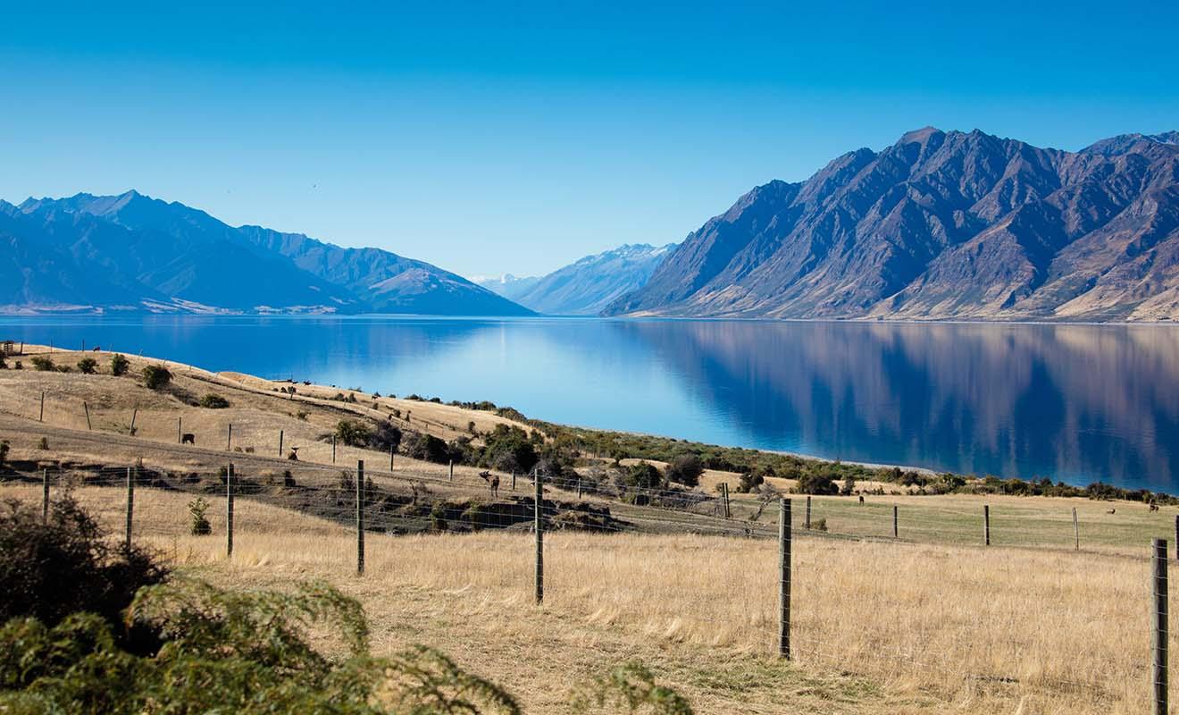 L'Otago a servi de lieu de tournage pour les trilogies de Peter Jackson, et vous aurez souvent une impression de déjà-vu durant le séjour.