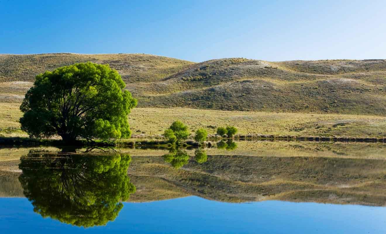 Pour admirer le reflet de Lake Clearwater, il faut venir à l'aube ou au crépuscule.