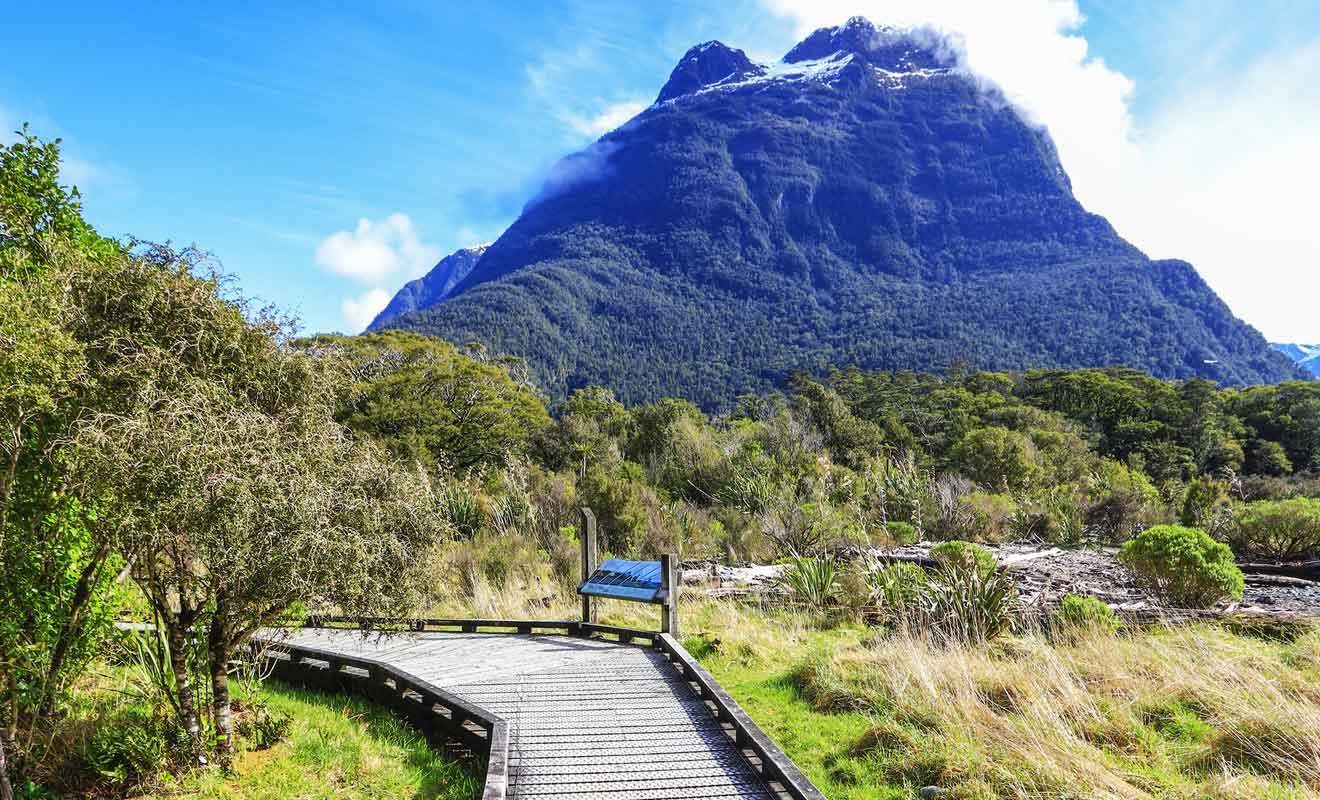 Milford Sound Lookout Track est un sentier qui commence près d'un parking.