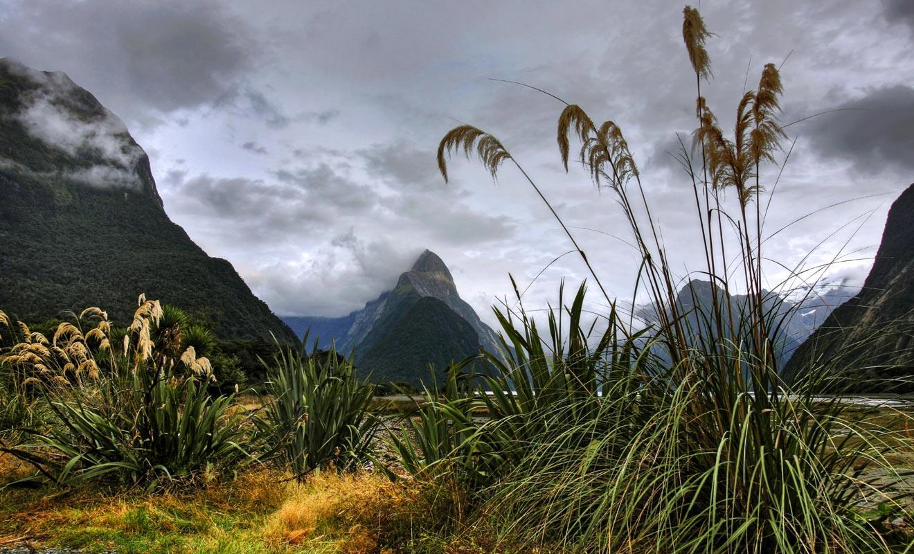 Si l'on excepte le Milford Sound, la population du Fiordland est proche de zéro. La pluviométrie extraordinaire et la végétation dense qui pousse sur des montagnes abruptes compliquent l'accès au parc. La beauté du paysage a de quoi laisser rêveur n'importe quel visiteur.