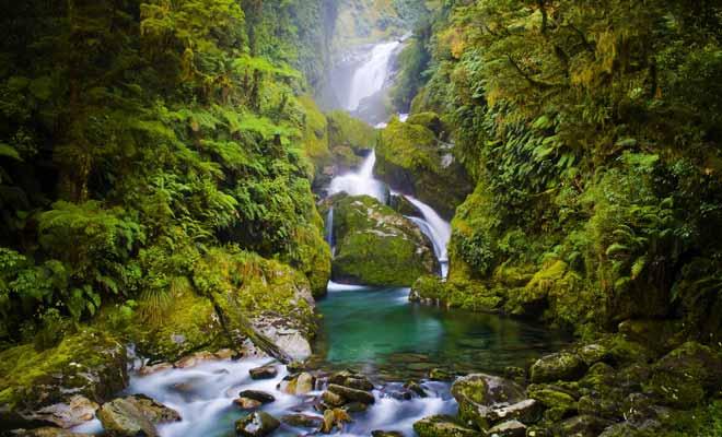 Une mauvaise chute est toujours possible, surtout si vous vous écartez du sentier pour vous aventurer dans les rivières. Une simple entorse peut mettre fin à votre séjour, alors soyez prudents.